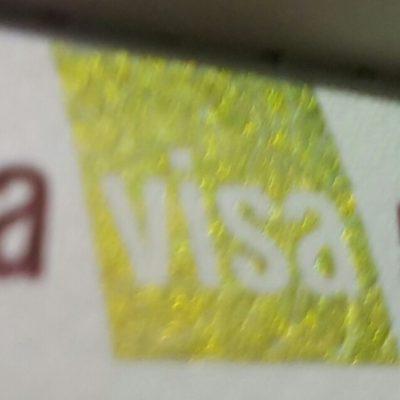 Mudahnya Mengurus Sendiri VISA RUSIA
